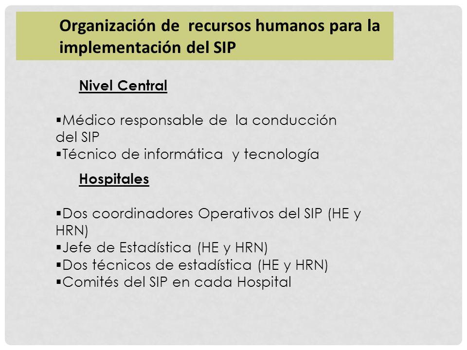 Organización de recursos humanos para la implementación del SIP Nivel Central Médico responsable de la conducción del SIP Técnico de informática y tec