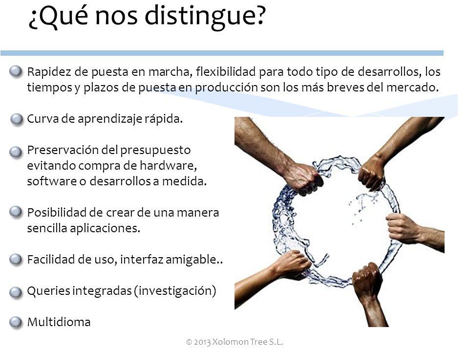 © 2013 Xolomon Tree S.L. ¿Qué nos distingue? Rapidez de puesta en marcha, flexibilidad para todo tipo de desarrollos, los tiempos y plazos de puesta e
