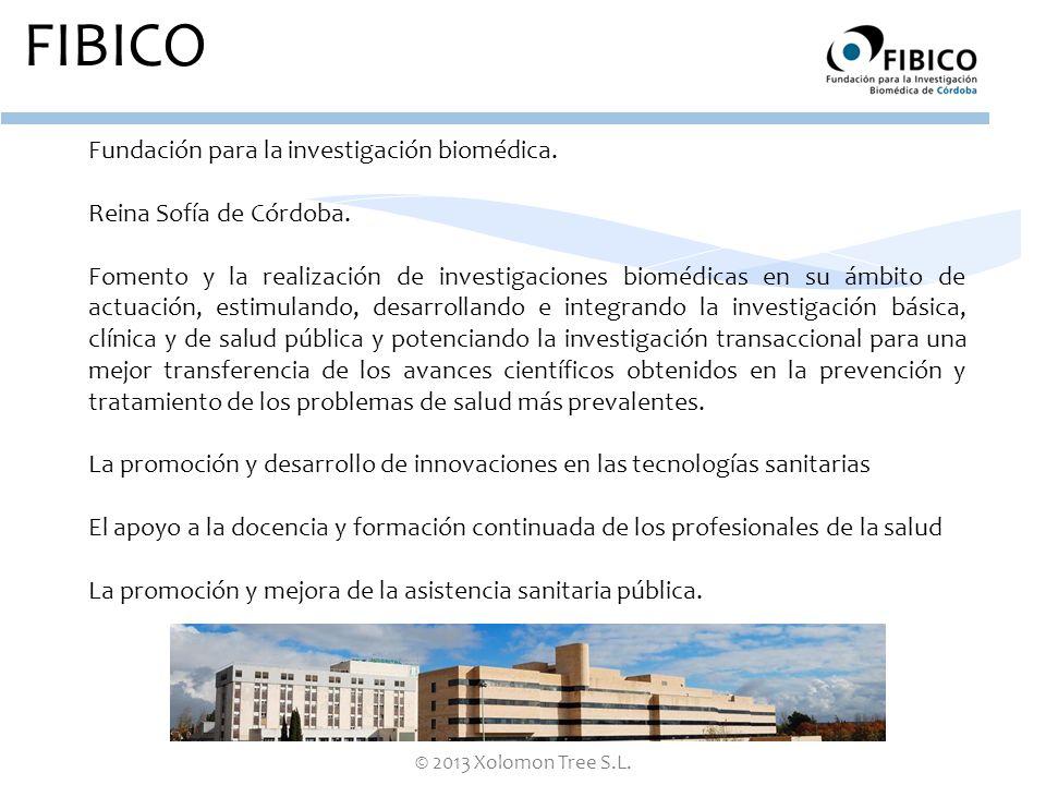 © 2013 Xolomon Tree S.L. FIBICO Fundación para la investigación biomédica. Reina Sofía de Córdoba. Fomento y la realización de investigaciones biomédi