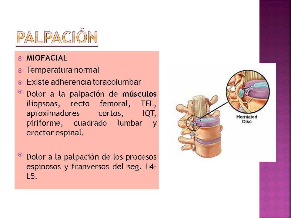 MIOFACIAL Temperatura normal Existe adherencia toracolumbar Dolor a la palpación de músculos iliopsoas, recto femoral, TFL, aproximadores cortos, IQT,