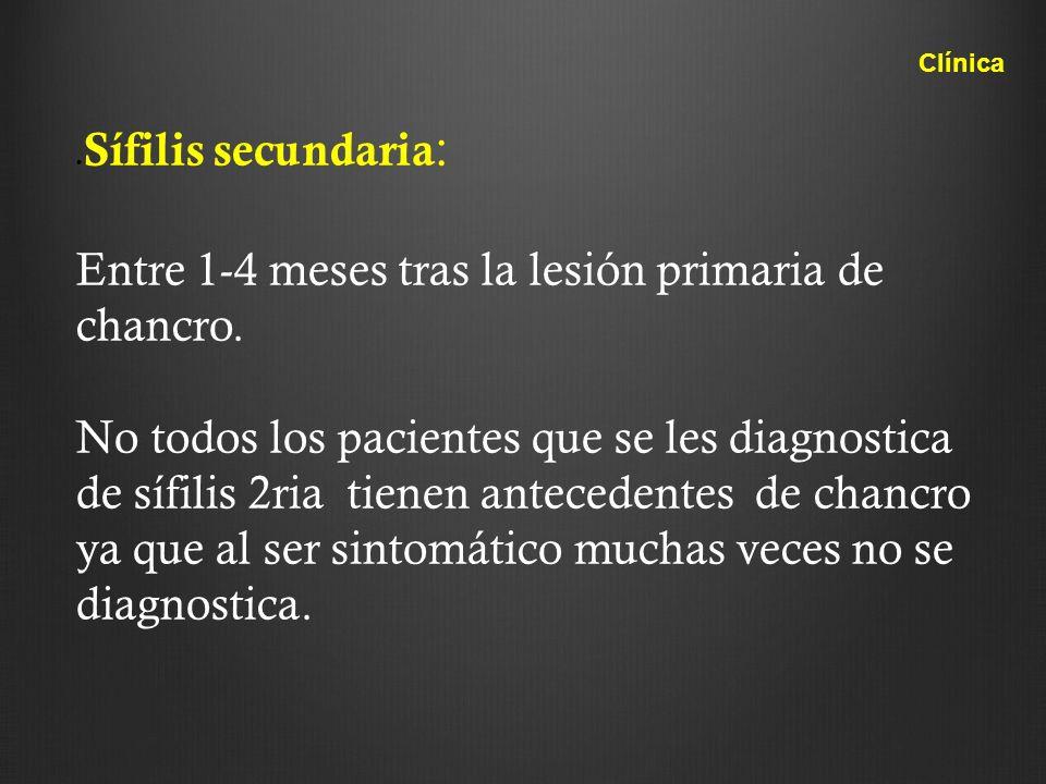 . Sífilis secundaria : Entre 1-4 meses tras la lesión primaria de chancro. No todos los pacientes que se les diagnostica de sífilis 2ria tienen antece