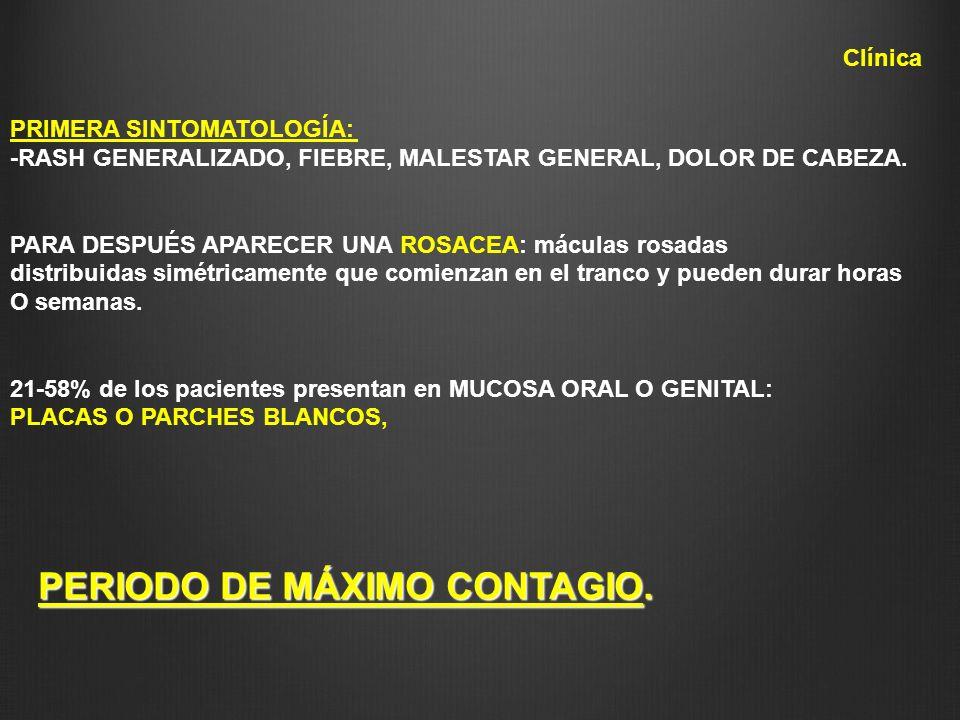 PRIMERA SINTOMATOLOGÍA: -RASH GENERALIZADO, FIEBRE, MALESTAR GENERAL, DOLOR DE CABEZA. PARA DESPUÉS APARECER UNA ROSACEA: máculas rosadas distribuidas