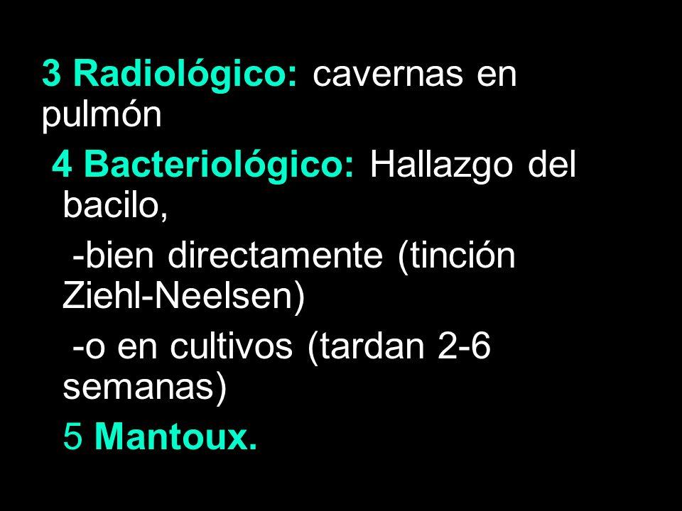 3 Radiológico: cavernas en pulmón 4 Bacteriológico: Hallazgo del bacilo, -bien directamente (tinción Ziehl-Neelsen) -o en cultivos (tardan 2-6 semanas