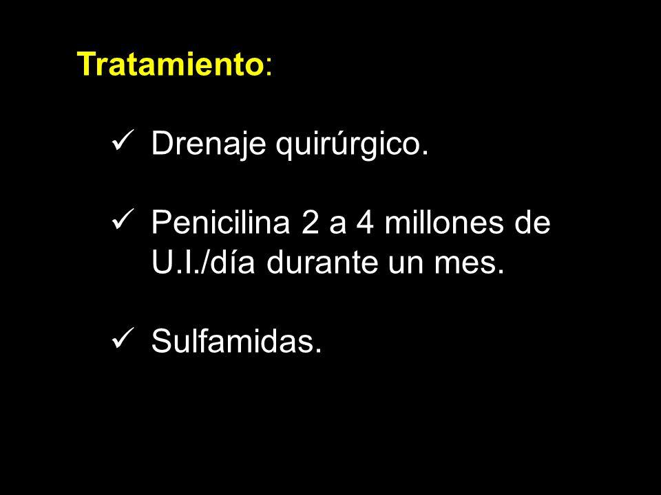 Tratamiento: Drenaje quirúrgico. Penicilina 2 a 4 millones de U.I./día durante un mes. Sulfamidas.