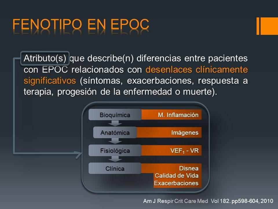 Atributo(s) que describe(n) diferencias entre pacientes con EPOC relacionados con desenlaces clínicamente significativos (síntomas, exacerbaciones, re