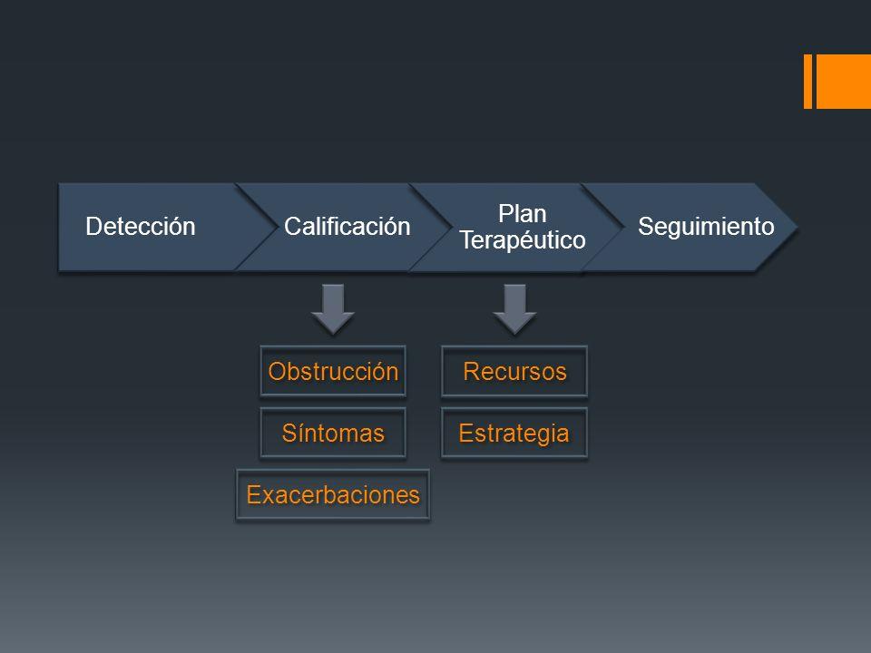 DetecciónCalificación Plan Terapéutico Seguimiento Recursos Estrategia Obstrucción Síntomas Exacerbaciones