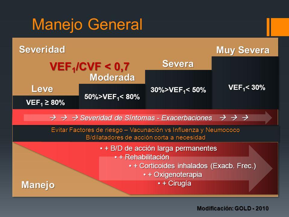 Manejo VEF 1 /CVF < 0,7 Evitar Factores de riesgo – Vacunación vs Influenza y Neumococo B/dilatadores de acción corta a necesidad Evitar Factores de r