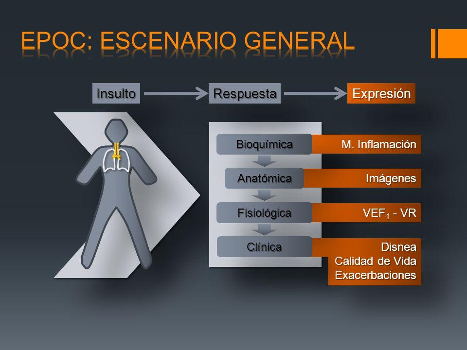 DetecciónCalificación Plan Terapéutico Seguimiento 1.Progreso de la Enfermedad y desarrollo de Complicaciones 2.Cumplimiento de Terapia 3.Hx.