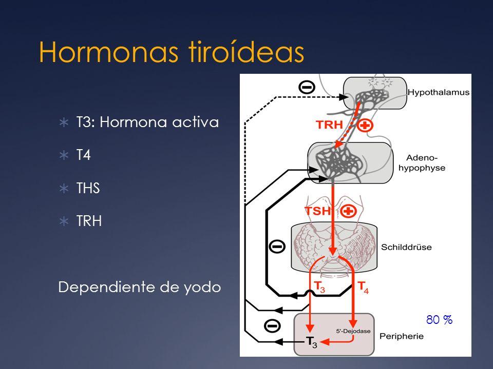 Sintomatología dada por: Enlentecimiento generalizado de los procesos metabólicos Ej: fatiga, intolerancia al frío Acumulación de matriz de glicosaminglicanos en espacios intersticiales Ej: engrosamiento de piel y pelo Dependientes de la gravedad y duración del hipotiroidismo