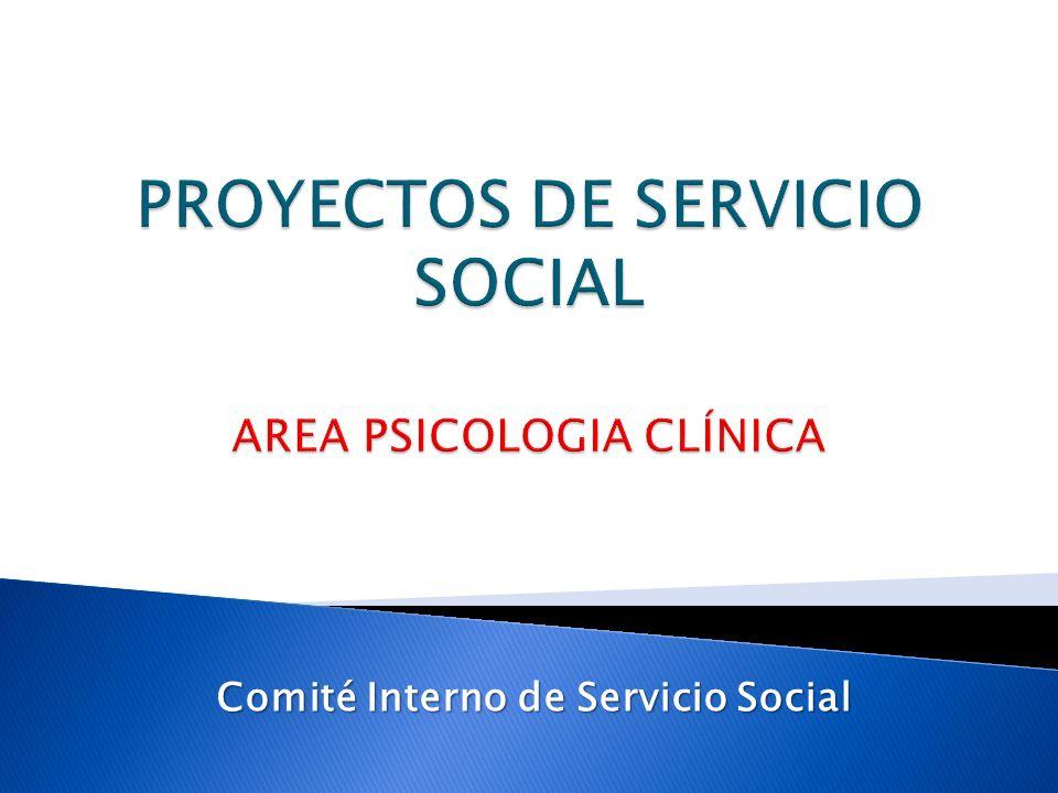 Comité Interno de Servicio Social