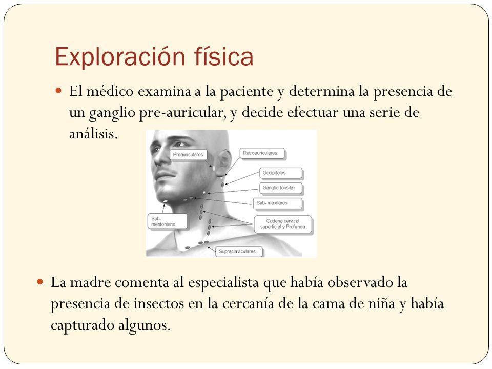 Exploración física El médico examina a la paciente y determina la presencia de un ganglio pre-auricular, y decide efectuar una serie de análisis. La m