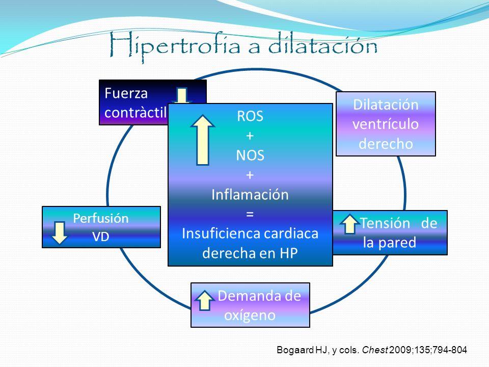 Hipertrofia a dilatación Bogaard HJ, y cols. Chest 2009;135;794-804 Fuerza contràctil Dilatación ventrículo derecho Tensión de la pared Demanda de oxí