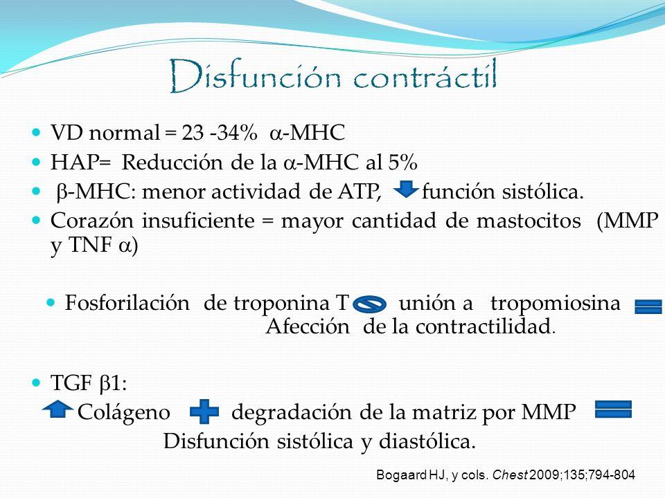 Disfunción contráctil VD normal = 23 -34% -MHC HAP= Reducción de la -MHC al 5% -MHC: menor actividad de ATP, función sistólica. Corazón insuficiente =