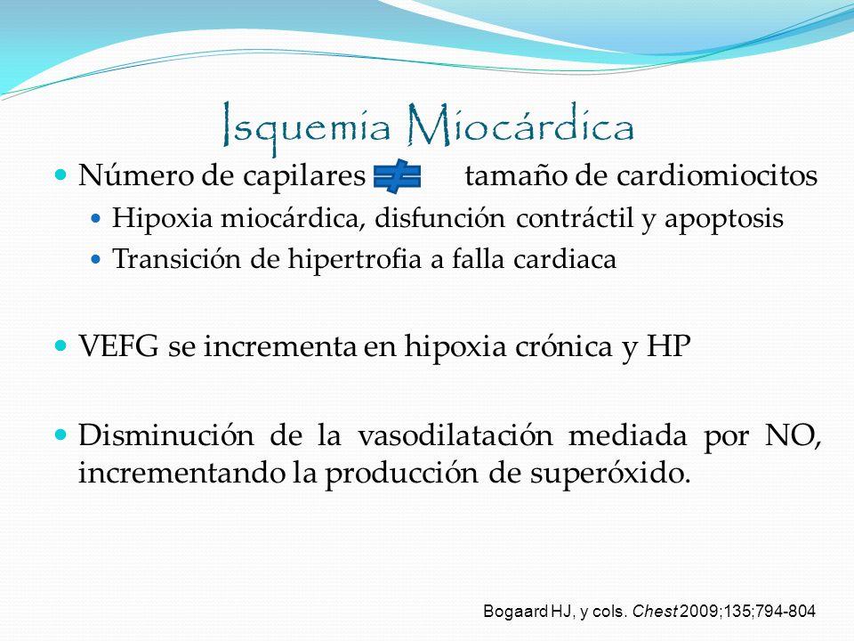 Isquemia Miocárdica Número de capilares tamaño de cardiomiocitos Hipoxia miocárdica, disfunción contráctil y apoptosis Transición de hipertrofia a fal