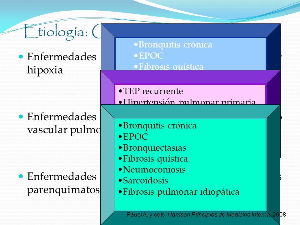 Etiología: Cardiopatía pulmonar crónica Enfermedades que producen vasoconstricción por hipoxia Enfermedades que causan obstrucción del lecho vascular