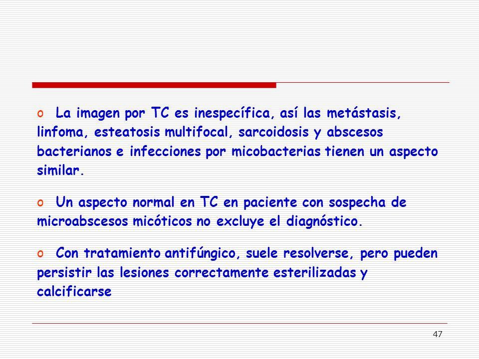 47 oLa imagen por TC es inespecífica, así las metástasis, linfoma, esteatosis multifocal, sarcoidosis y abscesos bacterianos e infecciones por micobacterias tienen un aspecto similar.