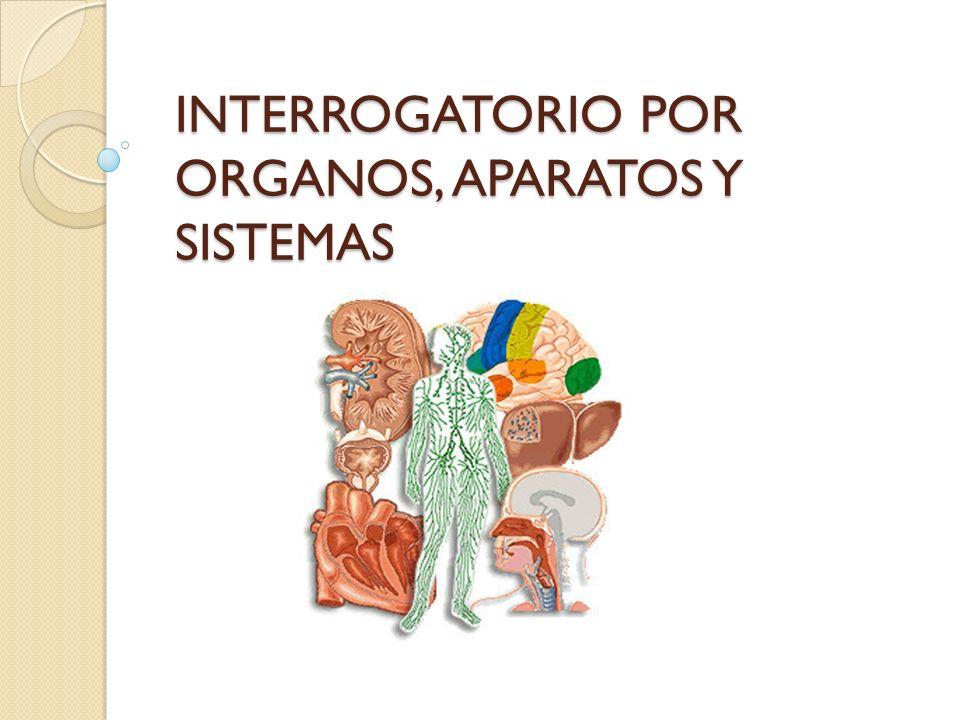 Apariencia General Edad y sexo Aspecto físico Orientación Estado nutricional Biotipo Colocación Vestimenta Higiene cooperación