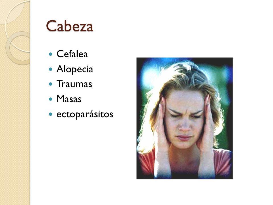 Cabeza Cefalea Alopecia Traumas Masas ectoparásitos