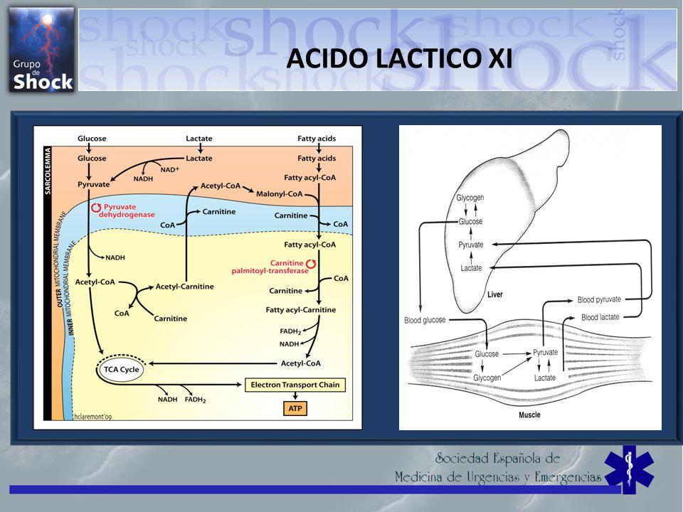 ACIDO LACTICO XI
