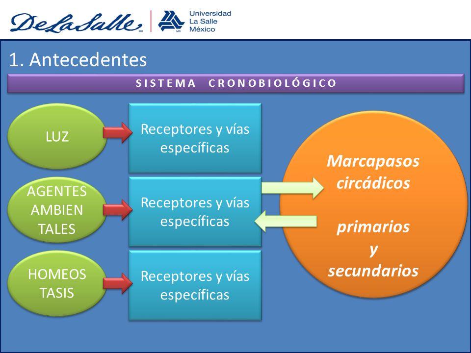 Guías clínicas de diagnóstico y tratamiento en gastroenterología del SII: - Cefalea(23 -45%) - Dolor de espalda(27 – 81%) - Fatiga(36 - 63%) - Mialgias(29 – 36%) - Dispareunia(9 – 42%) - Frecuencia urinaria(21 – 61 %) - Mareo(11 – 27%) 2.