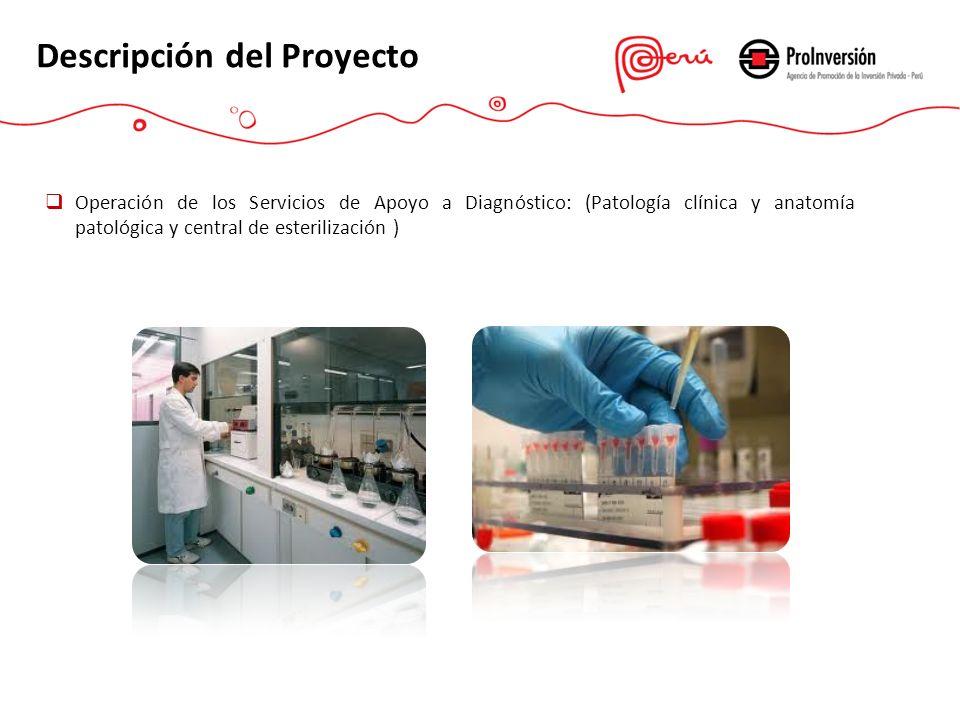 Operación de los Servicios de Apoyo a Diagnóstico: (Patología clínica y anatomía patológica y central de esterilización )