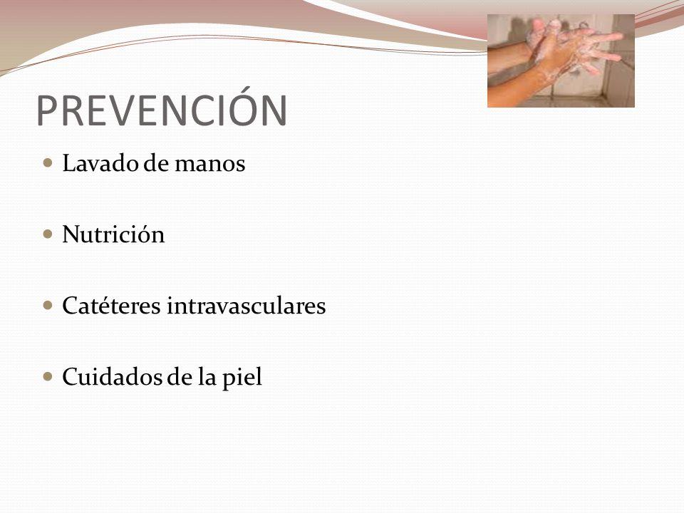 PREVENCIÓN Lavado de manos Nutrición Catéteres intravasculares Cuidados de la piel