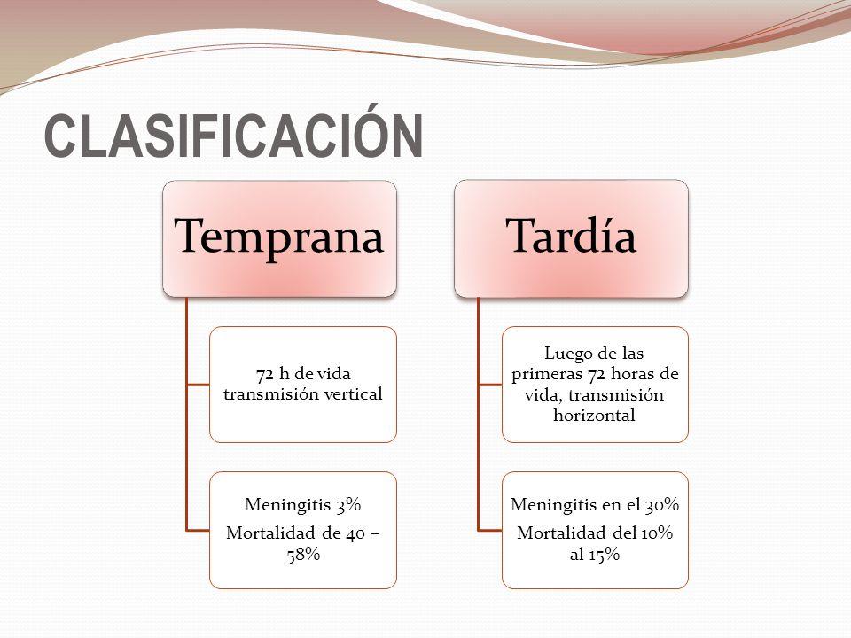 CLASIFICACIÓN Temprana 72 h de vida transmisión vertical Meningitis 3% Mortalidad de 40 – 58% Tardía Luego de las primeras 72 horas de vida, transmisi