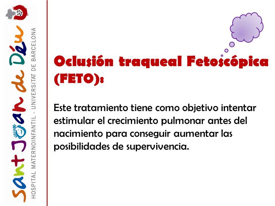 Oclusión traqueal Fetoscópica (FETO): Este tratamiento tiene como objetivo intentar estimular el crecimiento pulmonar antes del nacimiento para conseg