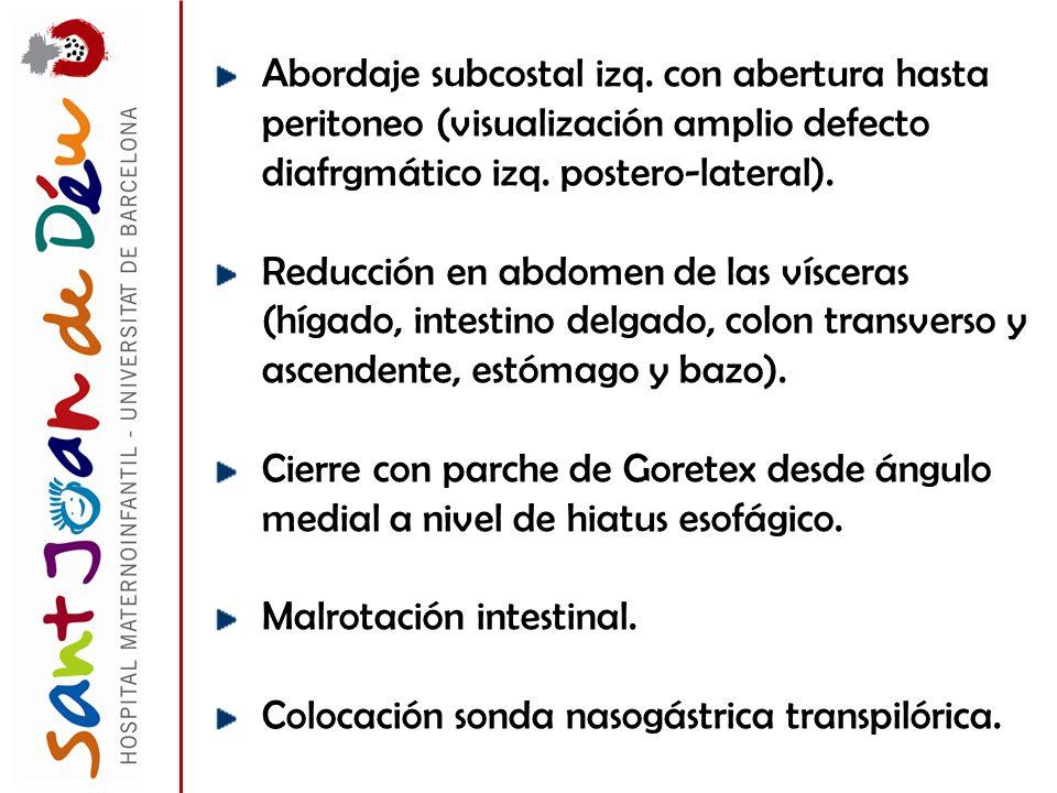 Abordaje subcostal izq. con abertura hasta peritoneo (visualización amplio defecto diafrgmático izq. postero-lateral). Reducción en abdomen de las vís