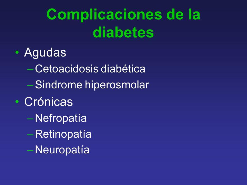 Complicaciones de la diabetes Agudas –Cetoacidosis diabética –Sindrome hiperosmolar Crónicas –Nefropatía –Retinopatía –Neuropatía