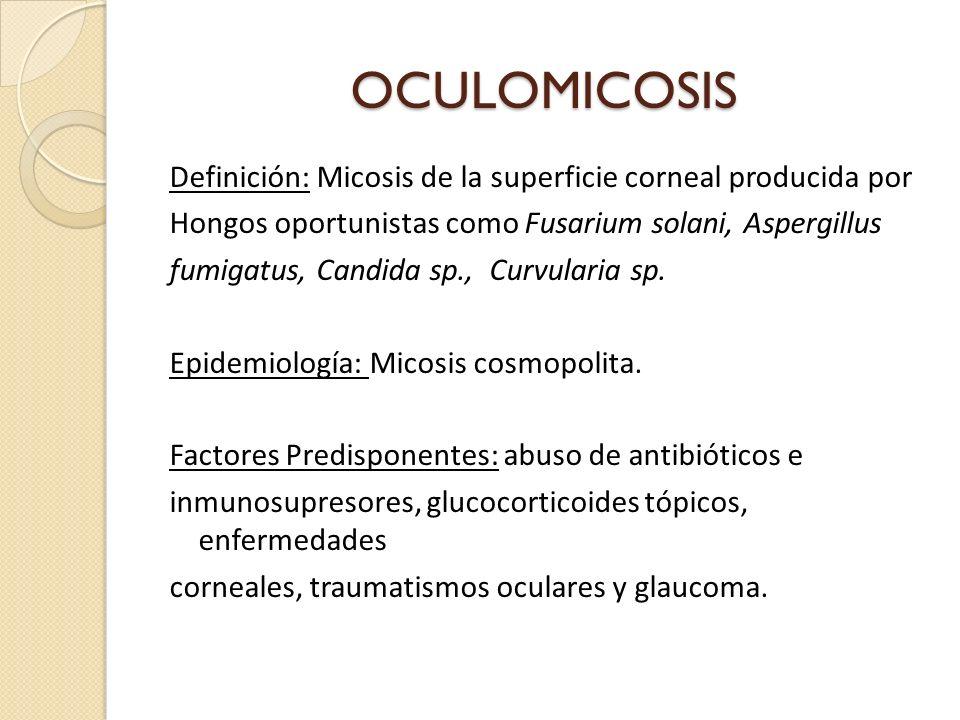 OCULOMICOSIS Definición: Micosis de la superficie corneal producida por Hongos oportunistas como Fusarium solani, Aspergillus fumigatus, Candida sp., Curvularia sp.