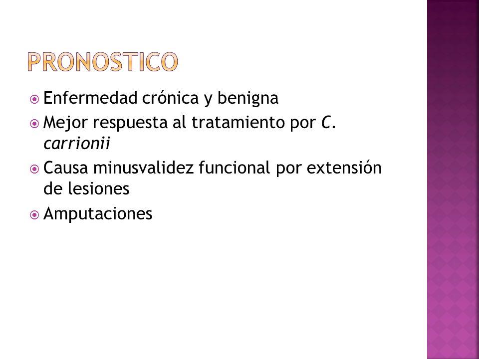 Enfermedad crónica y benigna Mejor respuesta al tratamiento por C. carrionii Causa minusvalidez funcional por extensión de lesiones Amputaciones