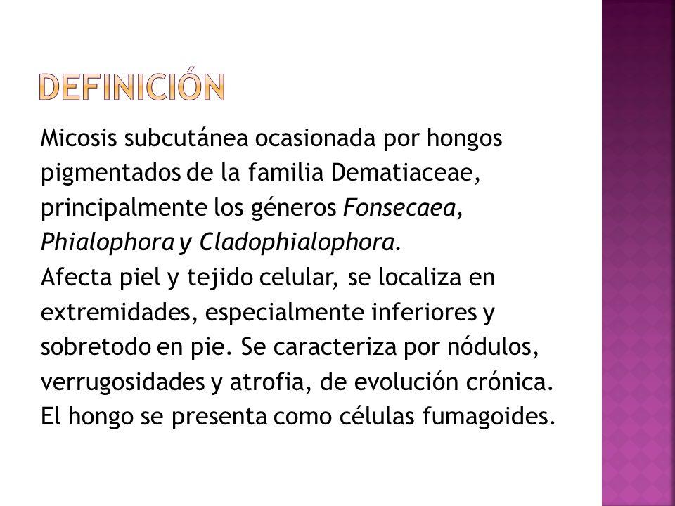 Micosis subcutánea ocasionada por hongos pigmentados de la familia Dematiaceae, principalmente los géneros Fonsecaea, Phialophora y Cladophialophora.