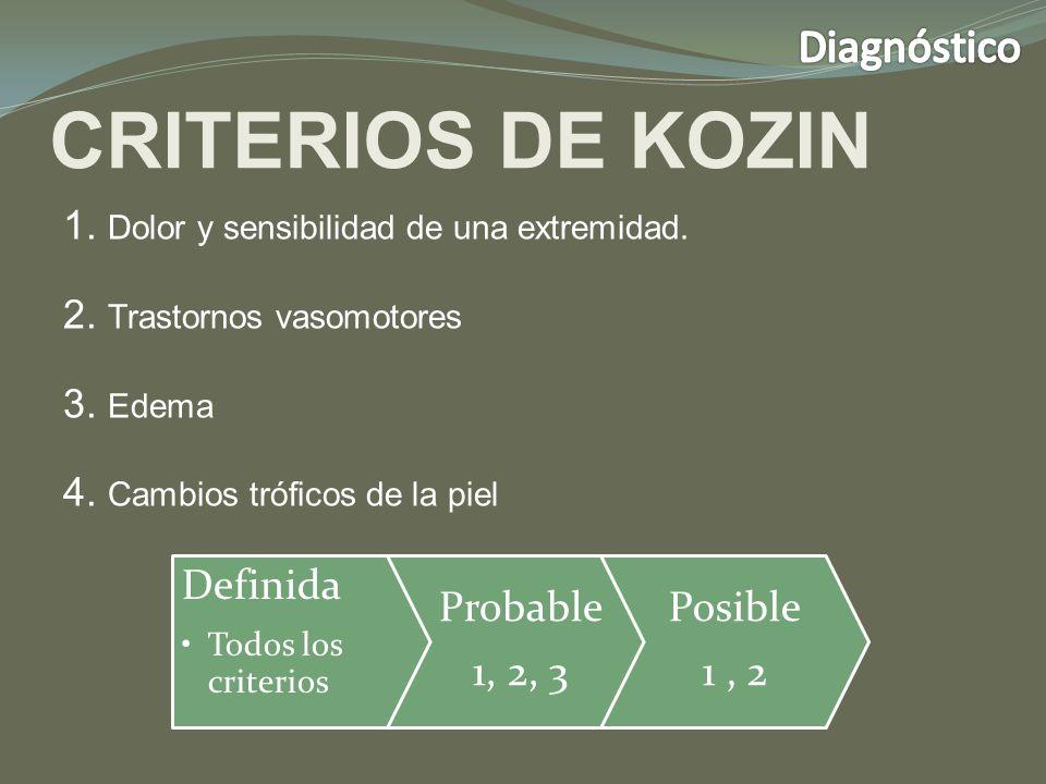 CRITERIOS DE KOZIN 1.Dolor y sensibilidad de una extremidad.