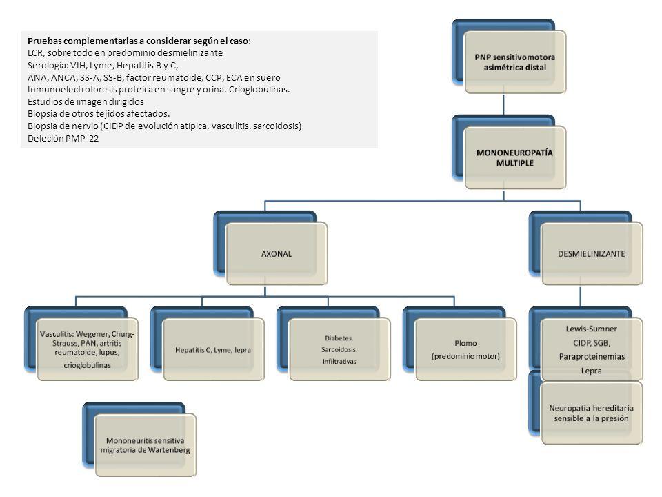 Pruebas complementarias a considerar según el caso: LCR, sobre todo en predominio desmielinizante Serología: VIH, Lyme, Hepatitis B y C, ANA, ANCA, SS