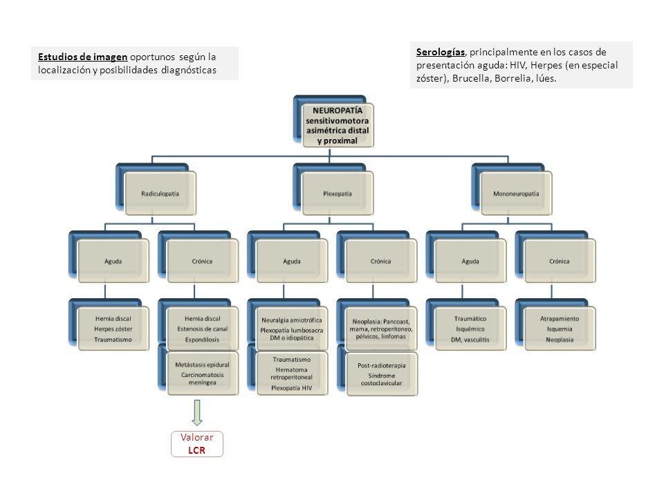 Ver protocolo estudio enfermedades de motoneurona Ac-antigangliósidos Valorar LCR Estudios de imagen dirigidos