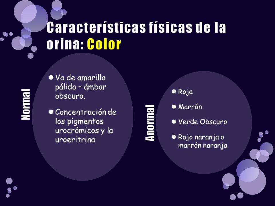 Va de amarillo pálido – ámbar obscuro. Concentración de los pigmentos urocrómicos y la uroeritrina Roja Marrón Verde Obscuro Rojo naranja o marrón nar