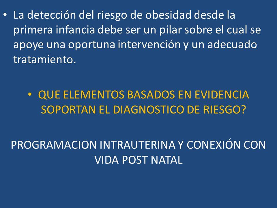 Desnutrición materna: Modelos animales de: Restricción de ProteÍna durante gestación : Producen bajo peso al nacimiento, IR y Resistencia a leptina.