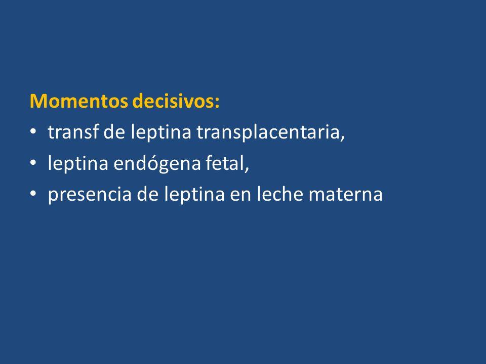 Momentos decisivos: transf de leptina transplacentaria, leptina endógena fetal, presencia de leptina en leche materna