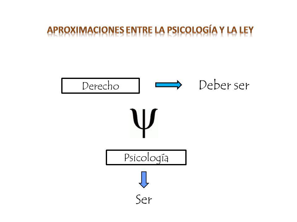 « Artículo 12.