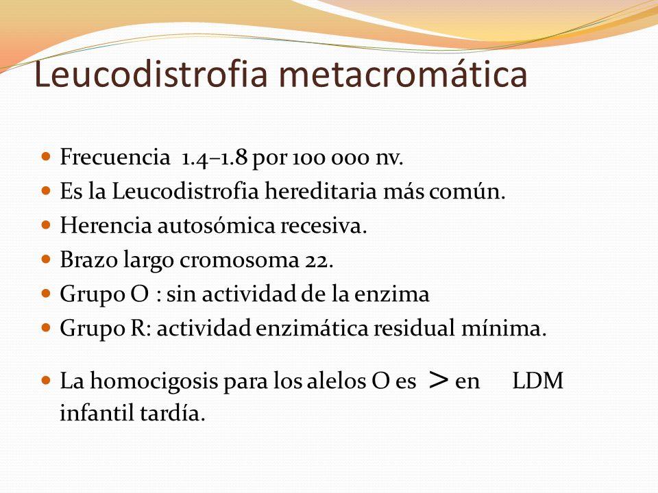 Leucodistrofia metacromática Frecuencia 1.4–1.8 por 100 000 nv. Es la Leucodistrofia hereditaria más común. Herencia autosómica recesiva. Brazo largo