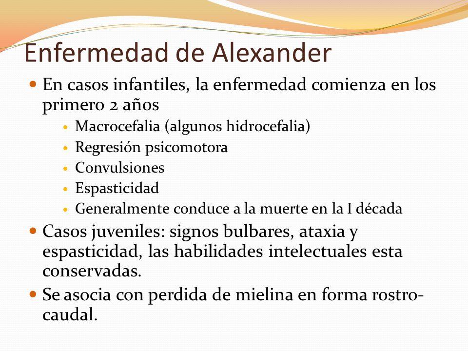 Enfermedad de Alexander En casos infantiles, la enfermedad comienza en los primero 2 años Macrocefalia (algunos hidrocefalia) Regresión psicomotora Co