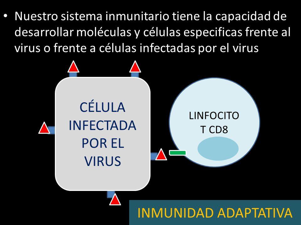 Nuestro sistema inmunitario tiene la capacidad de desarrollar moléculas y células especificas frente al virus o frente a células infectadas por el vir