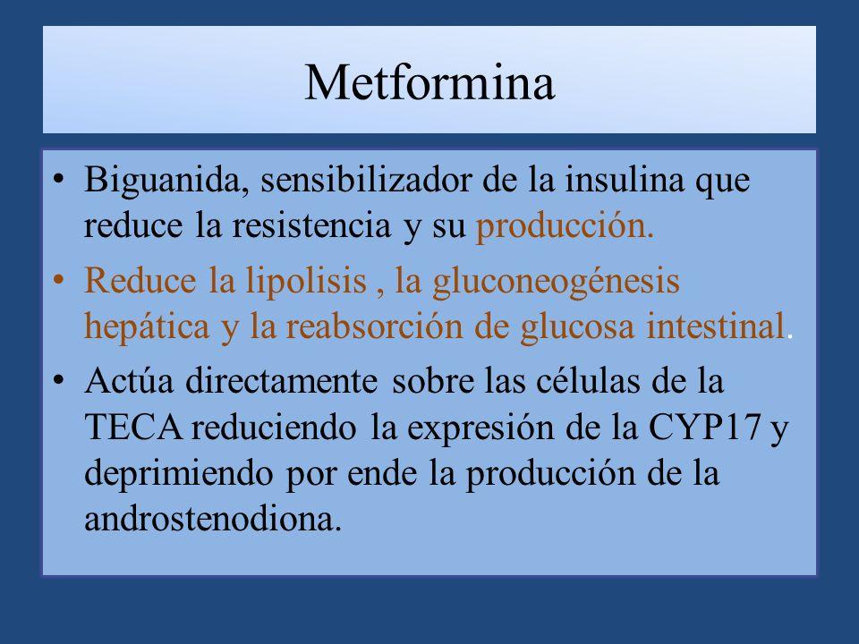 Metformina Biguanida, sensibilizador de la insulina que reduce la resistencia y su producción.