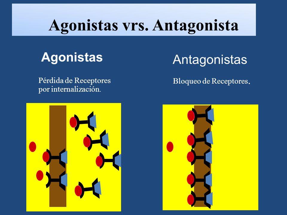 Agonistas vrs.Antagonista Pérdida de Receptores por internalización.
