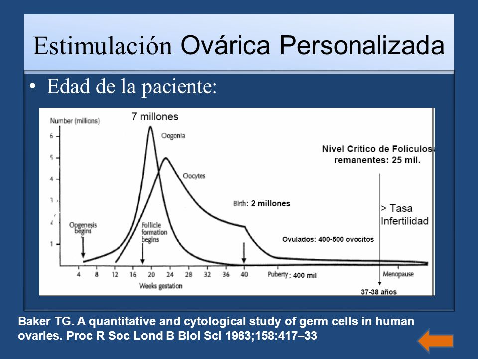 Estimulación Ovárica Personalizada Edad de la paciente: Baker TG. A quantitative and cytological study of germ cells in human ovaries. Proc R Soc Lond