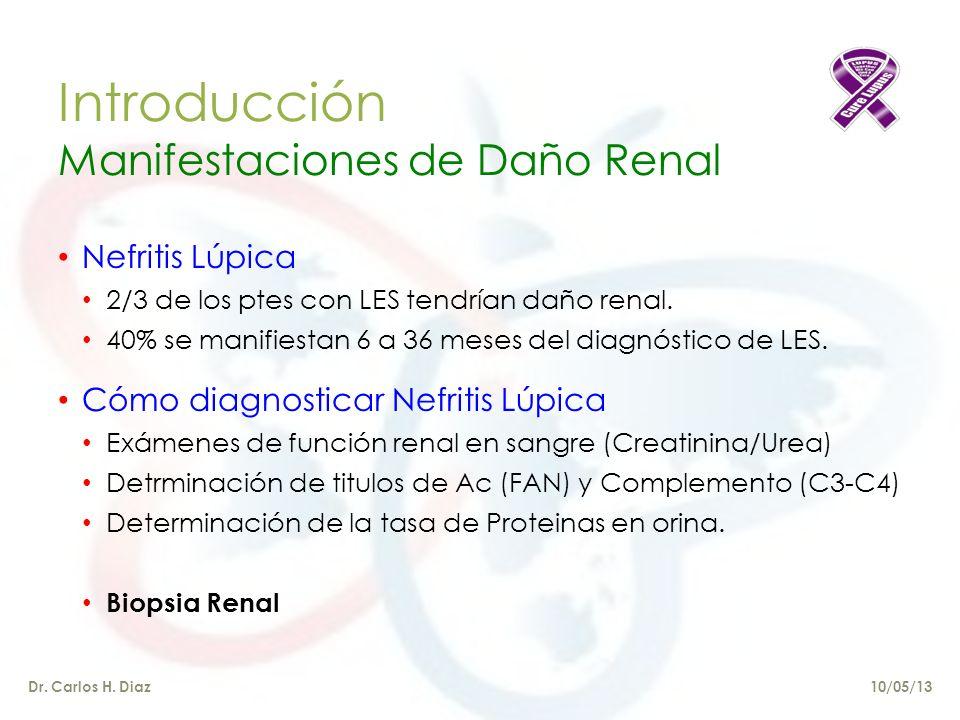Introducción Manifestaciones de Daño Renal Nefritis Lúpica 2/3 de los ptes con LES tendrían daño renal.