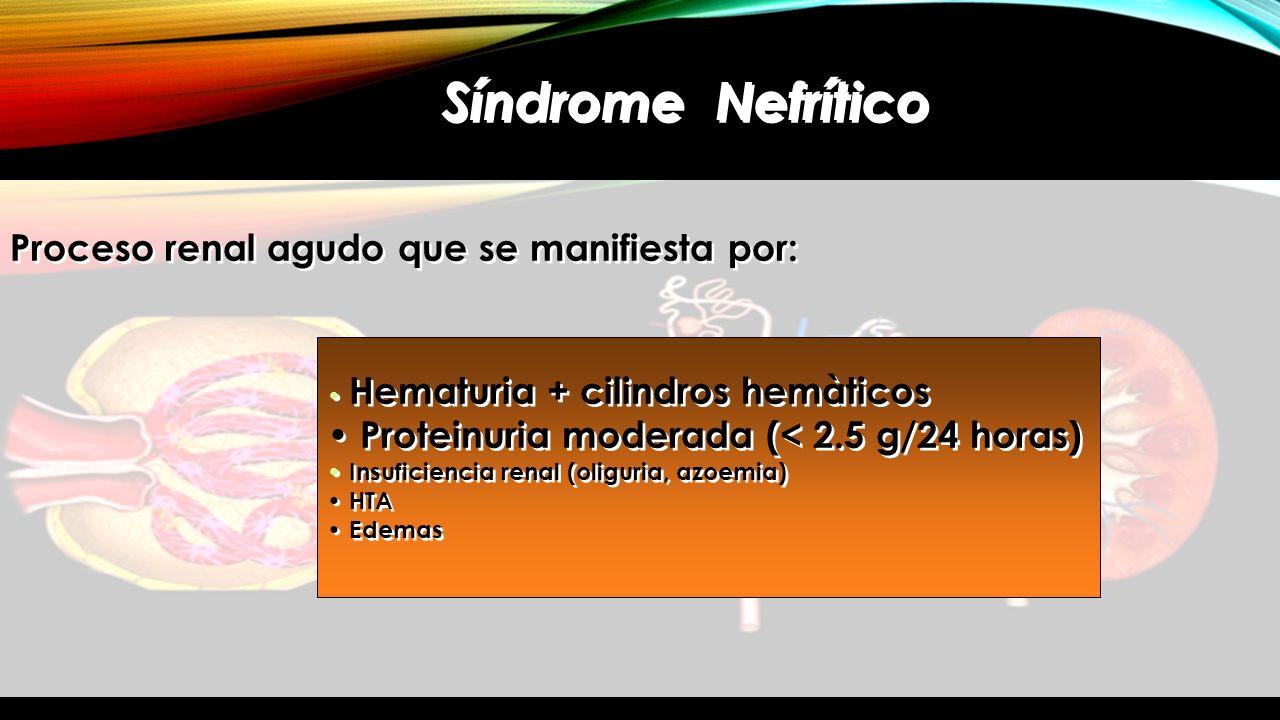 Síndrome Nefrítico Proceso renal agudo que se manifiesta por: Hematuria + cilindros hemàticos Proteinuria moderada (< 2.5 g/24 horas) Insuficiencia re
