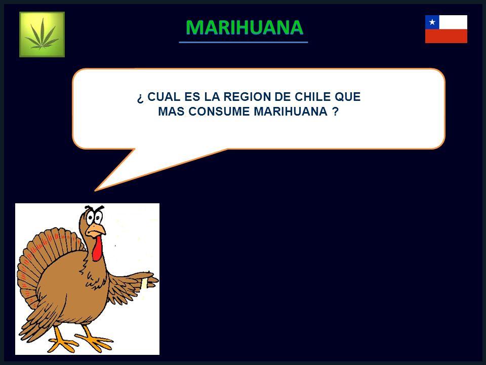 ¿ CUAL ES LA REGION DE CHILE QUE MAS CONSUME MARIHUANA ?