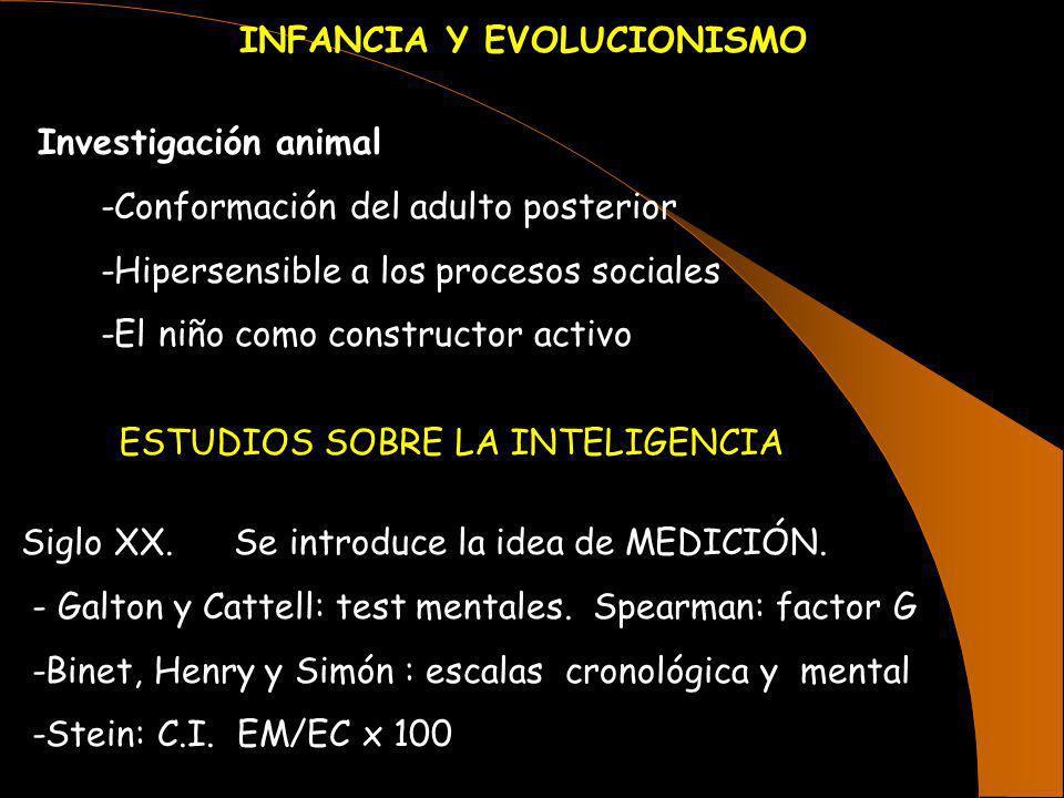 INFANCIA Y EVOLUCIONISMO Investigación animal -Conformación del adulto posterior -Hipersensible a los procesos sociales -El niño como constructor acti